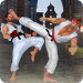 Karate Fighting 2020: Real Kung Fu Master Training 1.2.1