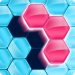 Block! Hexa Puzzle™  Block! Hexa Puzzle™   for Android