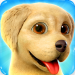 Dog Town: Pet Shop Game, Care & Play with Dog 1.4.34