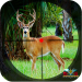 Safari Deer Hunting Africa: Best Hunting Game 2021  1.50 for Android