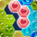 Block Hexa Puzzle: My Flower 0.83.1