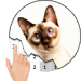 Cat Photography Color By Number – Pixel Art 7.0