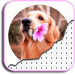 Dog Photography Coloring Book – Color By Number 4.0
