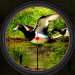 Duck Hunting 2019 – Real Wild Adventure Shooting 1.0