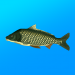 True Fishing. Fishing simulator 1.14.2.641 · Andromeda Coders