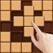 Wood Block Sudoku Game -Classic Free Brain Puzzle 0.5.1