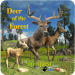 Deer of the Forest 1.2
