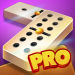 Dominoes Pro | Play Offline or Online With Friends 8.06