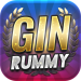Gin Rummy  2.9.0 for Android