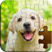 Jigsaw Puzzle  4.41.033 for Android