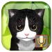 Talking Kittens virtual cat that speaks, take care  Talking Kittens virtual cat that speaks, take care   for Android