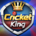 Cricket King™ – by Ludo King developer 2.1.1.38
