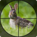 Rabbit Hunting Challenge 2019 – Shooting Games FPS 1.2