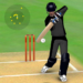 Smashing Cricket – a cricket game like none other 3.0.8