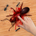 Ant Smasher Game  2.2