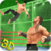 Tag Team Wrestling Superstars Fight: Hell In Cell 1.1.3